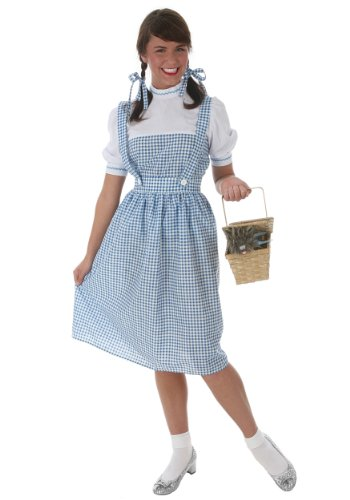 Blue Clone Trooper Costume (Fun Costumes womens Dorothy Long Dress Costume Small)
