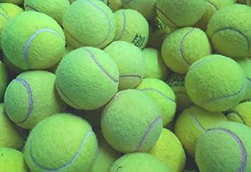 30 Palline da Tennis usate per Cani – Ben usate dai Principali
