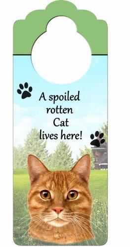 Tabby Cat, Orange Wood Sign