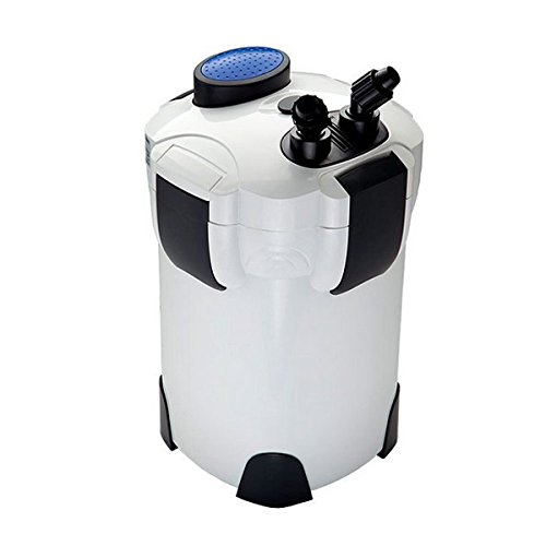 200 gallon canister filter - 4