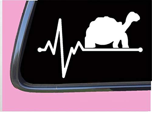 Tortoise Lifeline TP 233 vinyl 8