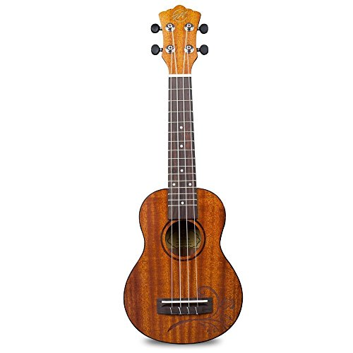 CLOUDMUSIC Colorful Soprano Ukulele With Aquila Educational Color Strings New Nylgut Strings For Beginner (Tattoo Rose Soprano)