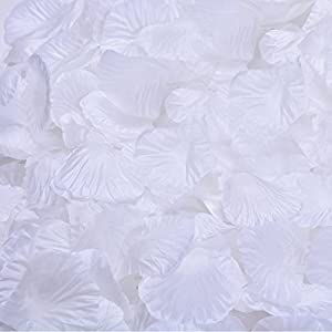BESKIT 3000 Pieces Silk Rose Petals Artificial Flower Petals for Valentine Day Wedding Flower Decoration (White)