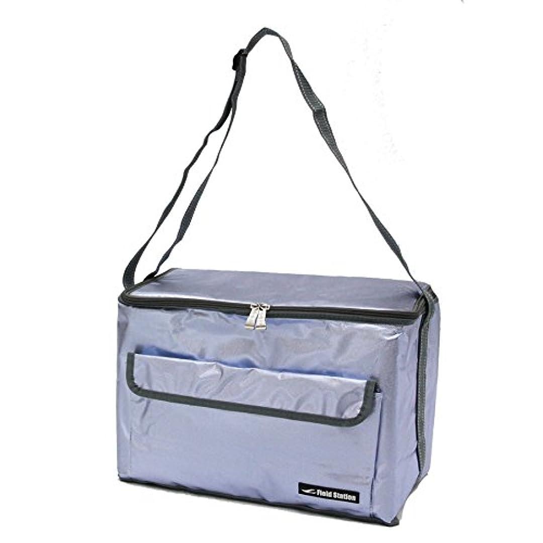 関与する流すアルミニウム(キッチンサプライヤー) ピクニック バスケット コンパクト クーラー ボックス 保冷 野外 買い物 行楽