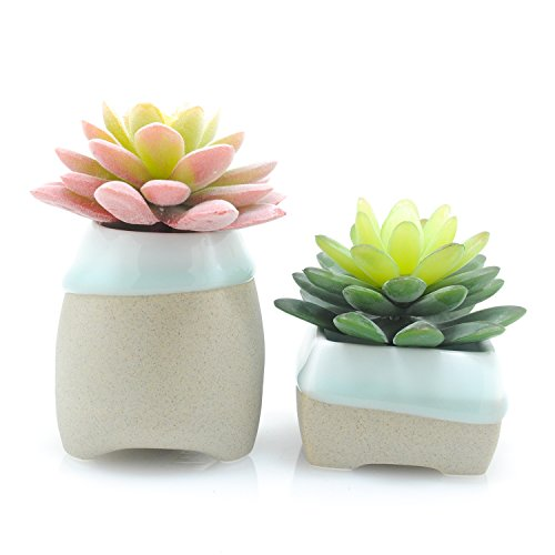 Velener Artificial Flocked Succulent Flowers with Ceramic Pots for Home Decor (Pink, Green Set of 2) (Glass Coffee Table Decorating Ideas)