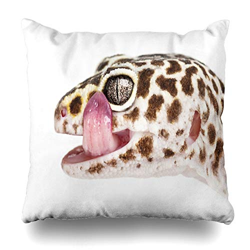 Ahawoso Throw Pillow Cover Eublepharis Brown Leopard Gecko Macularius Close Against Alone Licking Lips Away Design Home Decor Pillow Case Square Size 18x18 Inches Zippered Pillowcase