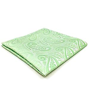 SHLAX&WING Paisley Mens Necktie Solid Color Light Green Unique Extra Long 63″