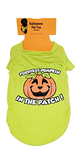 (Halloween Dog Tee Shirt Costume For Puppies, Small Dogs, Cats - Medium (Furriest Pumpkin In The)