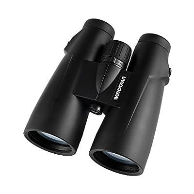 Wingspan Optics 8X56 Binoculars for Bird Watching
