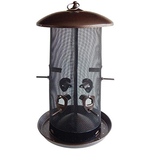 Squirrel Proof Bird Feeder, 2 Seed Compartments - 8 lb capacity