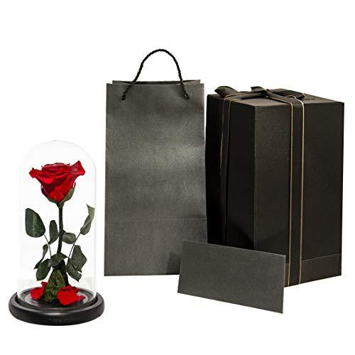 Premium Eternal Roses Ecuador Red Rose Ecuadorian Red Rose Enchanted Rose Preserved Rose Forever Rose Eternal Rose Flowers for delivery Prime