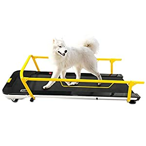 5. iCare-Pet Pet Treadmill