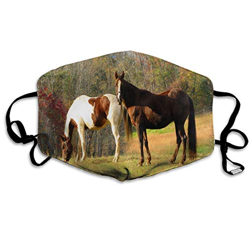 Anti Dust Mask Pin Horses And Autumn Cotton Mouth Mask Winter Healthy Washable For Men Halloween