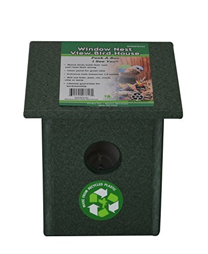 Songbird Essentials Recycled Plastic Window Nest View Bird House