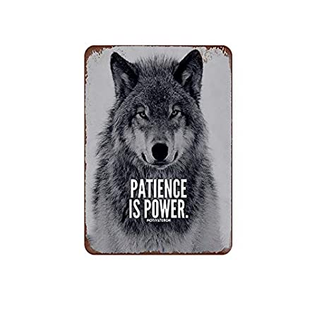 Amazon.com: Mora Color Patience is Power Animal Series Wolf ...