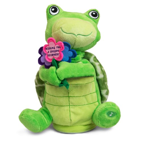 The Petting Zoo Animated Stuffed Turtle,