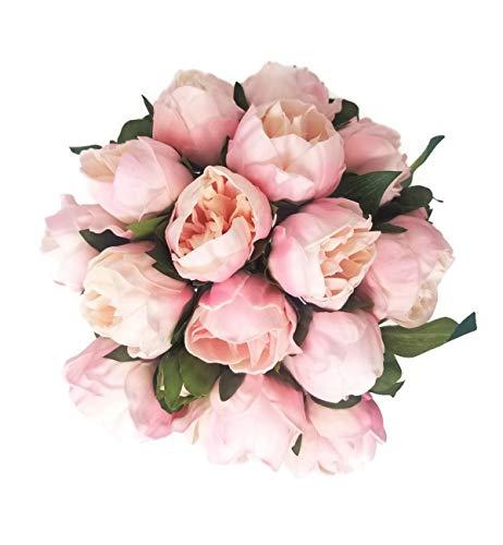 (Floral Kingdom 14