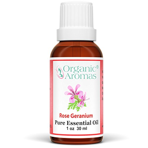 Rose Geranium Essential Oil 100% Pure for Professional Aromatherapy - Therapeutic Grade - Works well with Organic Aroma Diffusers - 30 ml bottles by Organic Aromas (Image #2)