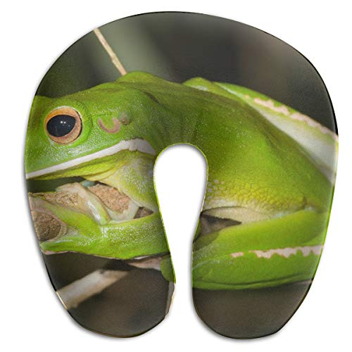 - FULIHUA White-lipped Tree Frog U-Shaped Neck Pillow Flight, Train, Car, Office Naps People Cervical Problems