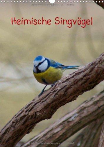 Heimische Singvögel (Wandkalender 2014 DIN A4 hoch): Bunte Vogelwelt der Gattung Passeri in der Natur und in Parkanlagen Monatskalender, 14 Seiten