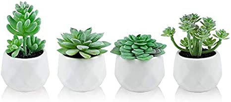 Amazon Com Artificial Plants Desk Fake Succulents Indoor Decor Office Room Decoration Small Tiny Realistic Plants In White Ceramic Potted Home Kitchen