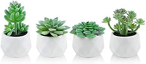 Artificial Plastic Sukkulente Cactus Echeveria Flower Home Office Decor