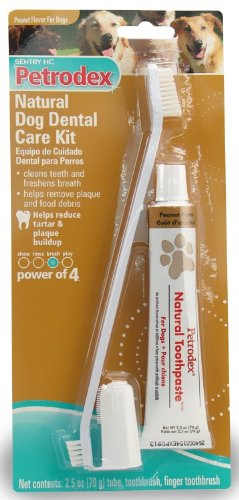 Petrodex Natural Dog Dental Care Kit, Peanut Toothpaste with 2 Toothbrushes, My Pet Supplies