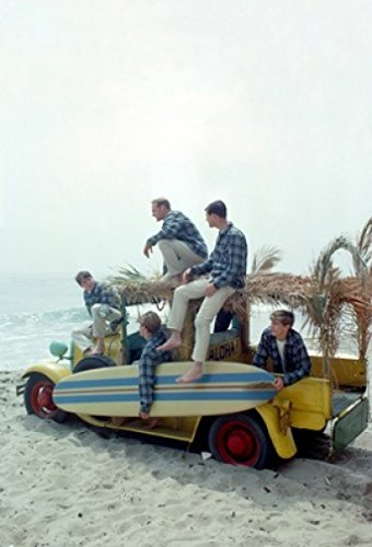 - The Beach Boys 18X24 Poster New! Rare! #BHG796935