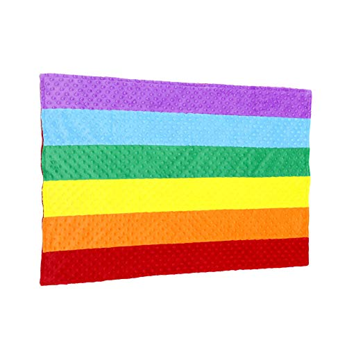 Luxury Minky Dot Plush Rainbow Flag Baby Blanket, 24