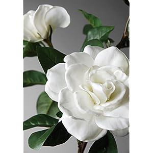 Wayhome Fair Silk Gardenias White - Excellent Home Decor - Indoor & Outdoor 15