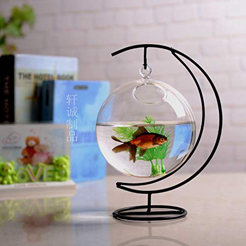 Creative mini transparent glass fish tank goldfish tank hanging water glass home decor   White, 12cm