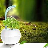 Smart Garden Flower Pot Soilless Culture LED Desk Lamp Creative Gifts Automatic Remind Touch Dimmer - Garden Pots & Planters