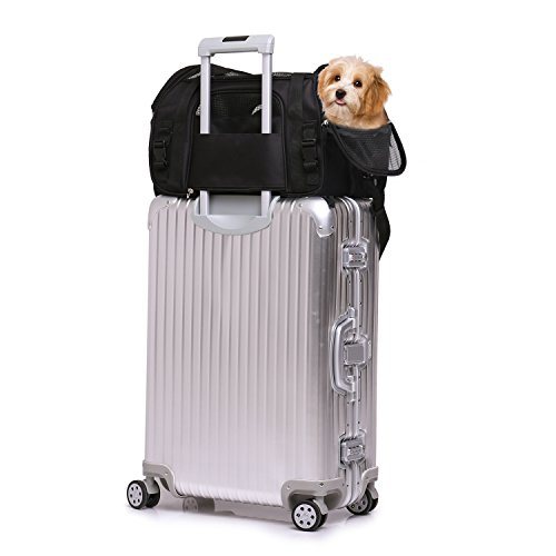 """Jespet Soft Sided Pet Carrier Comfort 17"""" for Airline Travel, Portable Dog Tote Bag for Small Animals, Cats, Kitten, Puppy, Black by Jespet (Image #4)"""