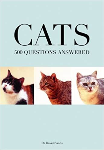 Cats 500 Questions Answered