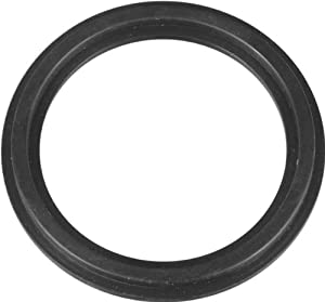 Intex Stepped Washer Gasket
