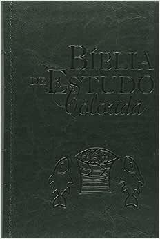 Bíblia de Estudo Colorida Verde