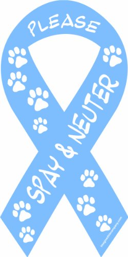 Imagine This 8-Inch by 4-Inch Car Magnet Social Issues Ribbon, Please Spay and Neuter, Blue - Neuter Magnet