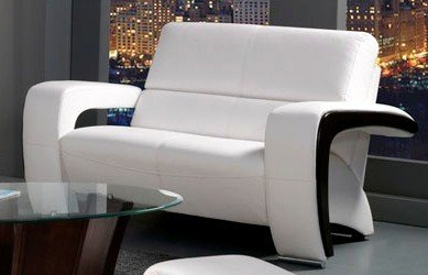 Enez Loveseat in White Black Finish by Furniture of America