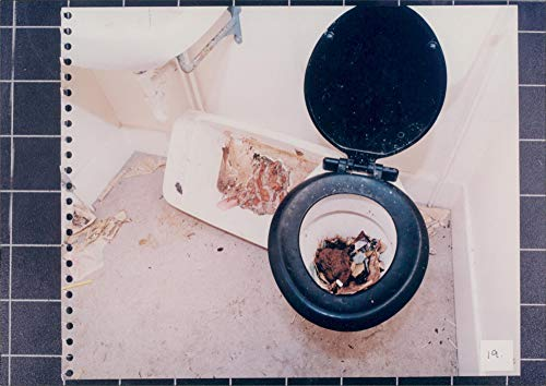 Bowl Frank - Vintage photo of Toilet Bowl in Frank Sharman39;s House