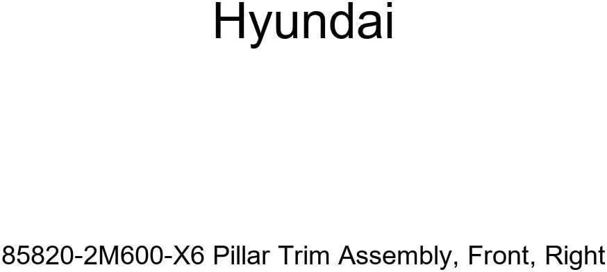 Right Genuine Hyundai 85820-2M600-X6 Pillar Trim Assembly Front