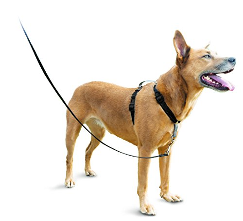 PetSafe 3in1 Harness, from The Makers of The Easy Walk Harness, Fully Adjustable No-Pull Dog ()