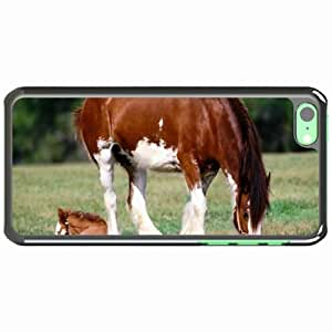 iPhone 5C Black Hardshell Case horse grass male care Desin Images Protector Back Cover by mcsharks