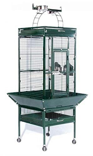 - StarSun Depot Prevue Hendryx Small Wrought Iron Select Bird Cage - Sage Green