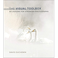 Visual Toolbox, The: 60 Lessons for Stronger Photographs (Voices That Matter) book cover