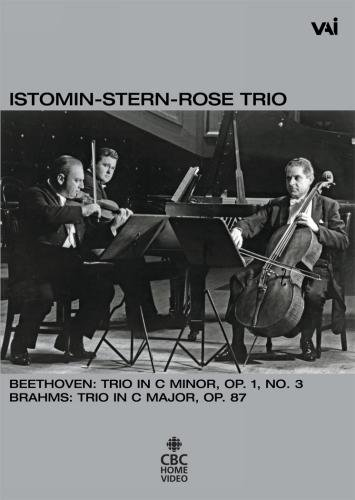 The Istomin-Stern-Rose Trio: Trios by Beethoven and Brahms (Pno Trios)