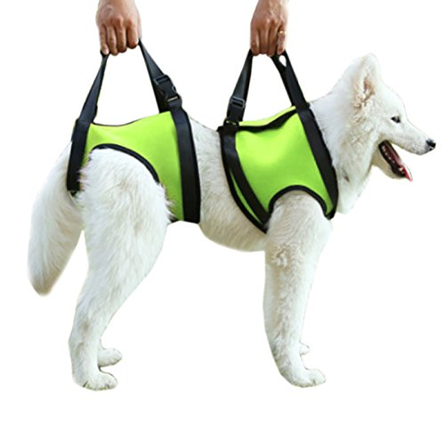 Alfie Pet by Petoga Couture - Harrison Support & Rehabilitation Lifting Harness Front and Rear Set - Color: Green, Size: -