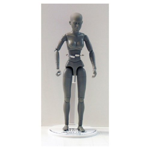 Art S. Buck Anatomical Manikin - Female (Artist Arts Buck Models)