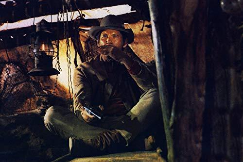 Charles Bronson in C'era una volta il West playing harmonica 24x18 Poster