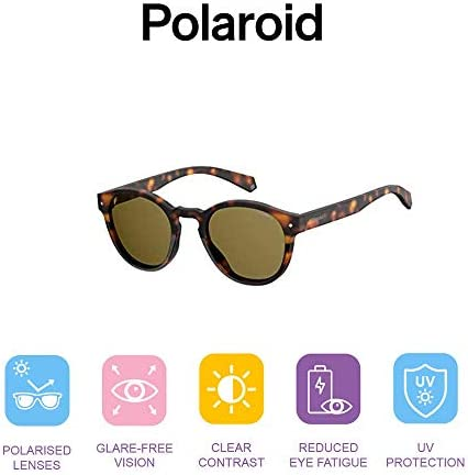 Polaroid Sunglasses Pld6042/S Round Sunglasses
