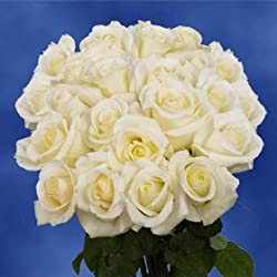 Fresh Cut Roses | 50 White Roses for Valentine's Day